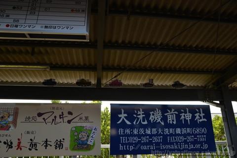 20130503_sakuraebi_08
