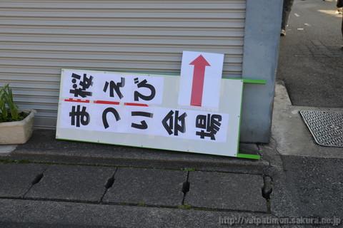20130503_sakuraebi_1