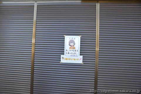 20130503_sakuraebi_34