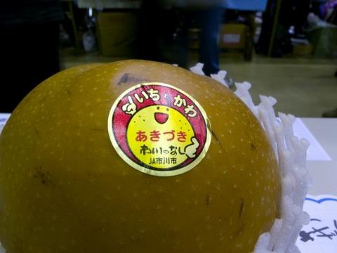 20090921-010.jpg